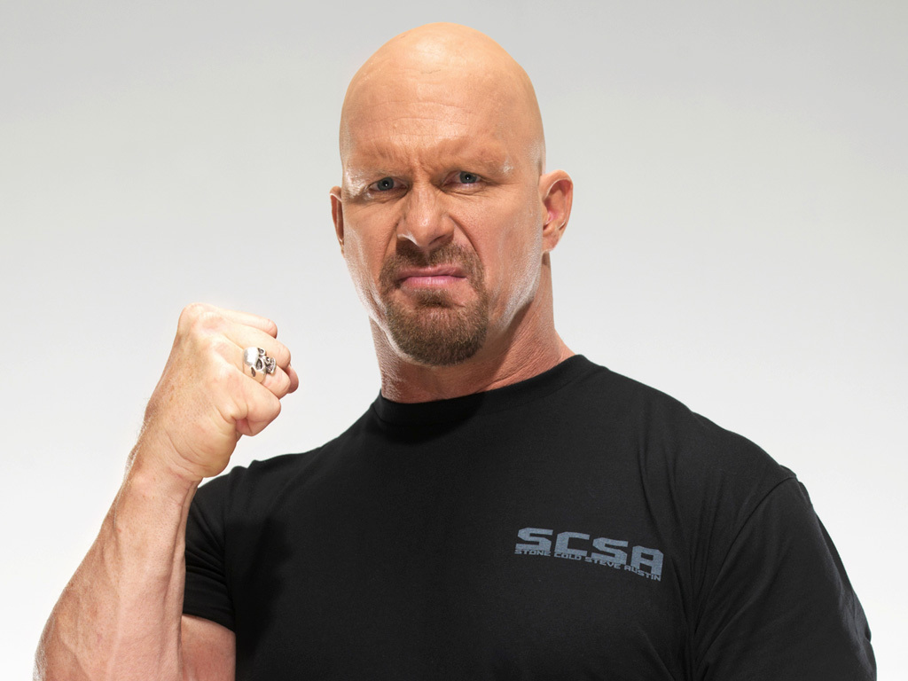 Steve Austin earned a  million dollar salary, leaving the net worth at 45 million in 2017