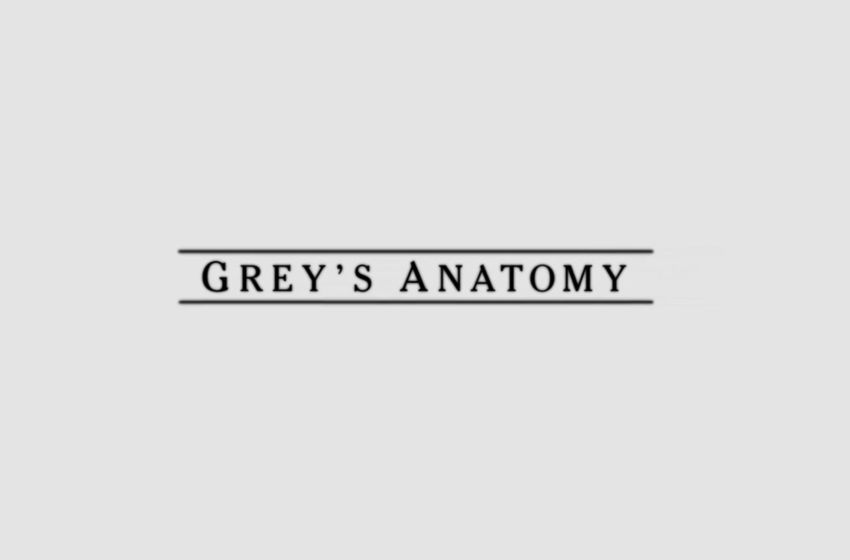 Greys anatomy opening