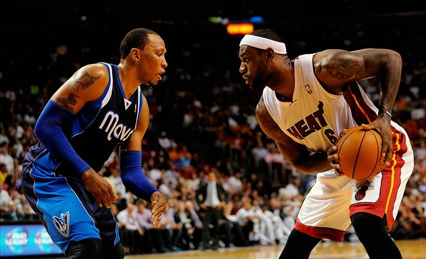 Image result for shawn marion defense